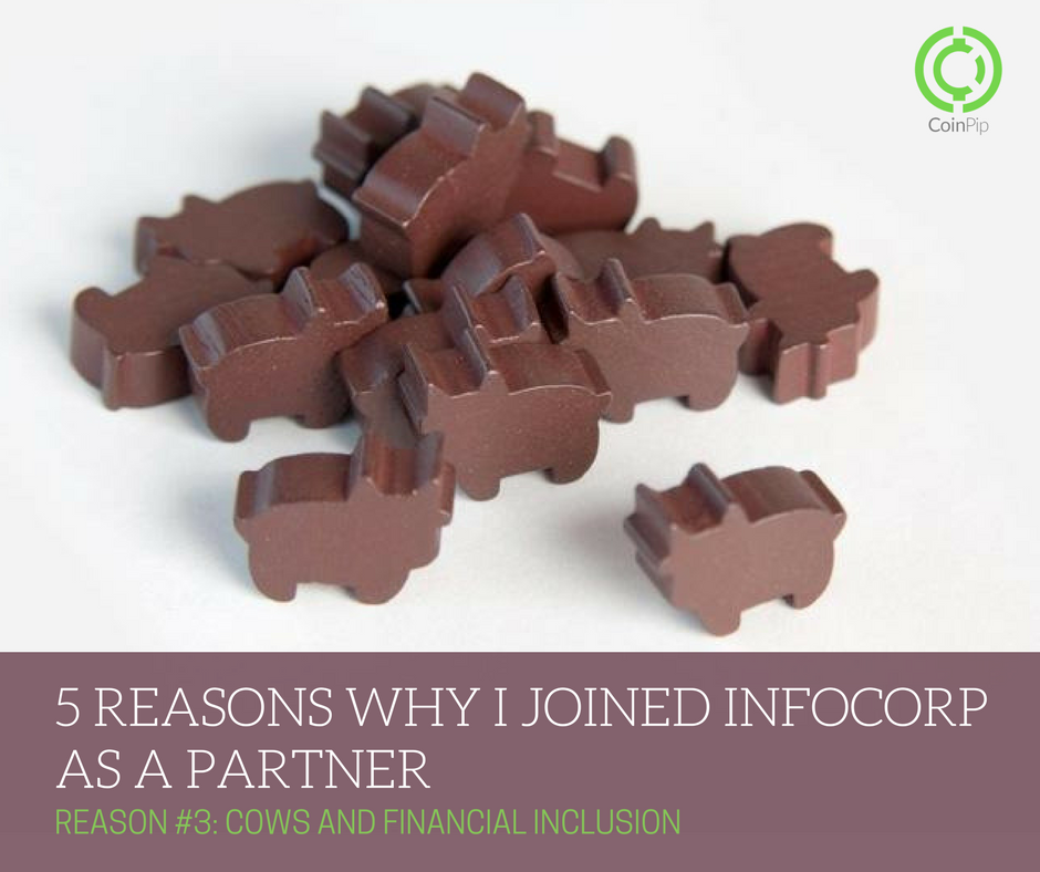 5 Reasons Why I Joined Infocorp As a Partner